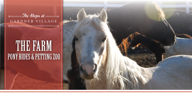 pony rides and petting zoo at gardner village